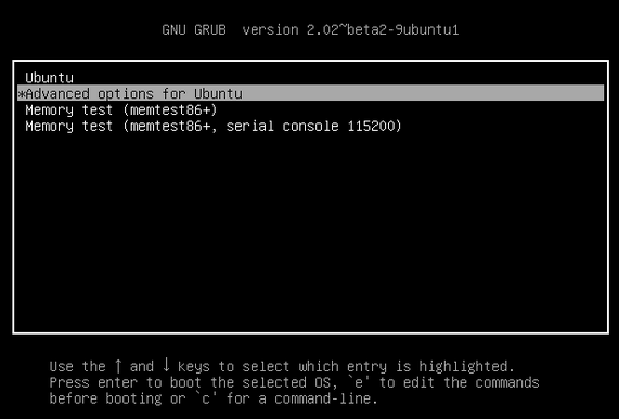 Advanced-options-for-ubuntu-01